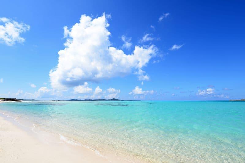 海開きスタート!貸切バスで行く沖縄旅行